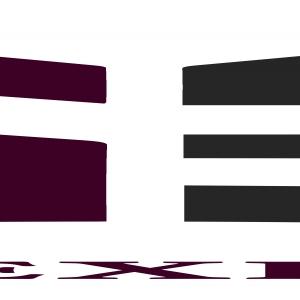 Logo SHAH EXPORTS